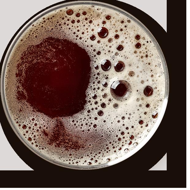 https://brewlab.be/wp-content/uploads/2017/05/beer_transparent.png